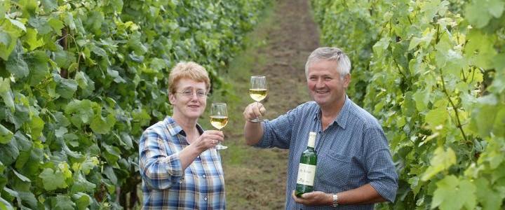 wijn-van-nederlandse-boeren